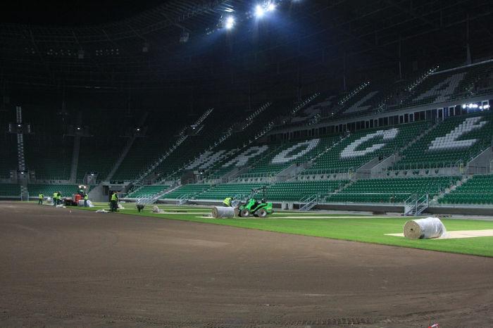 2011 stadion Ślask Wroclaw realizacja wymiany nawierzchni z polskiej trawy naturalnej rolowanej Ogrod Skwierzyna